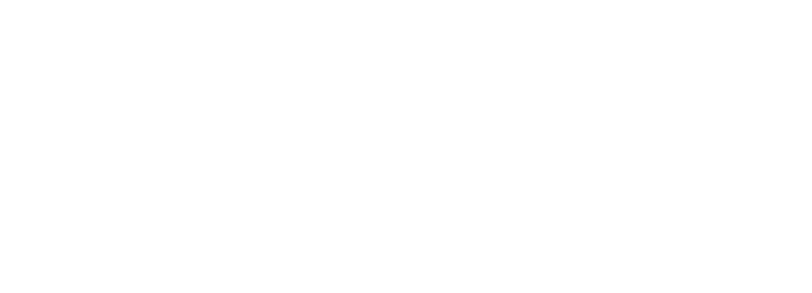 Nude Systems Ethical Hacking Logo