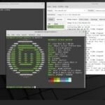 How To Install Zenmap In Linux Mint 20.x. Source: nudesystems.com